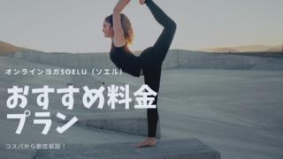 オンラインヨガSOELU(ソエル)料金プラン