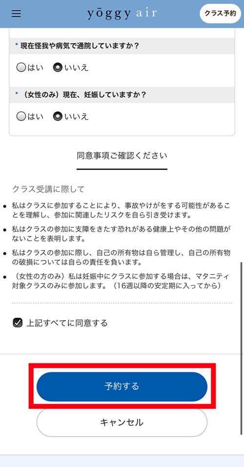 スタジオ・ヨギーのヨギー・エア体験予約