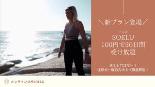 SOELU-100円で30日間-受け放題
