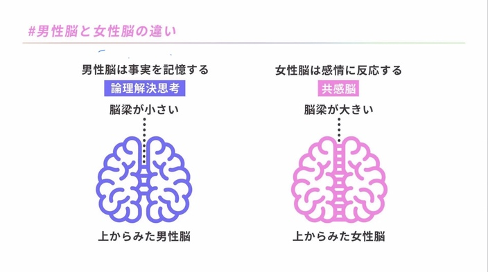 difference-of-brain-between-women-and-men